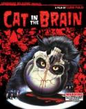 Cat In The Brain - The Fulci shocker restored! poster