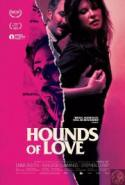 Hounds of Love - ENCORES poster