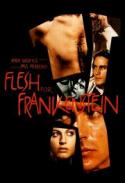 Flesh For Frankenstein - as part of our ANDY WARHOL Halloween! poster