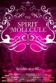 DMT:  The Spirit Molecule - 8pm show sold out so 10:15pm is happening! poster